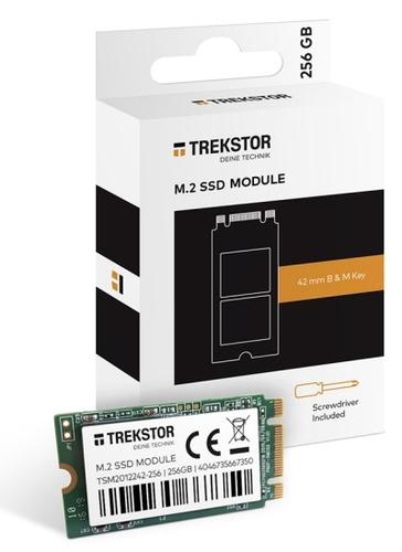"""Trekstor - Ssd - 256gb - Intern - M.2 2242 - Sata 6gb/s (667""""TrekStor - SSD - 256GB - intern - M.2 2242 - SATA 6Gb/s (66737)"""""""